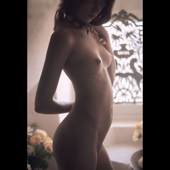 Awesome brunette model with sultry breasts and round great ass beautiful orange rose in background