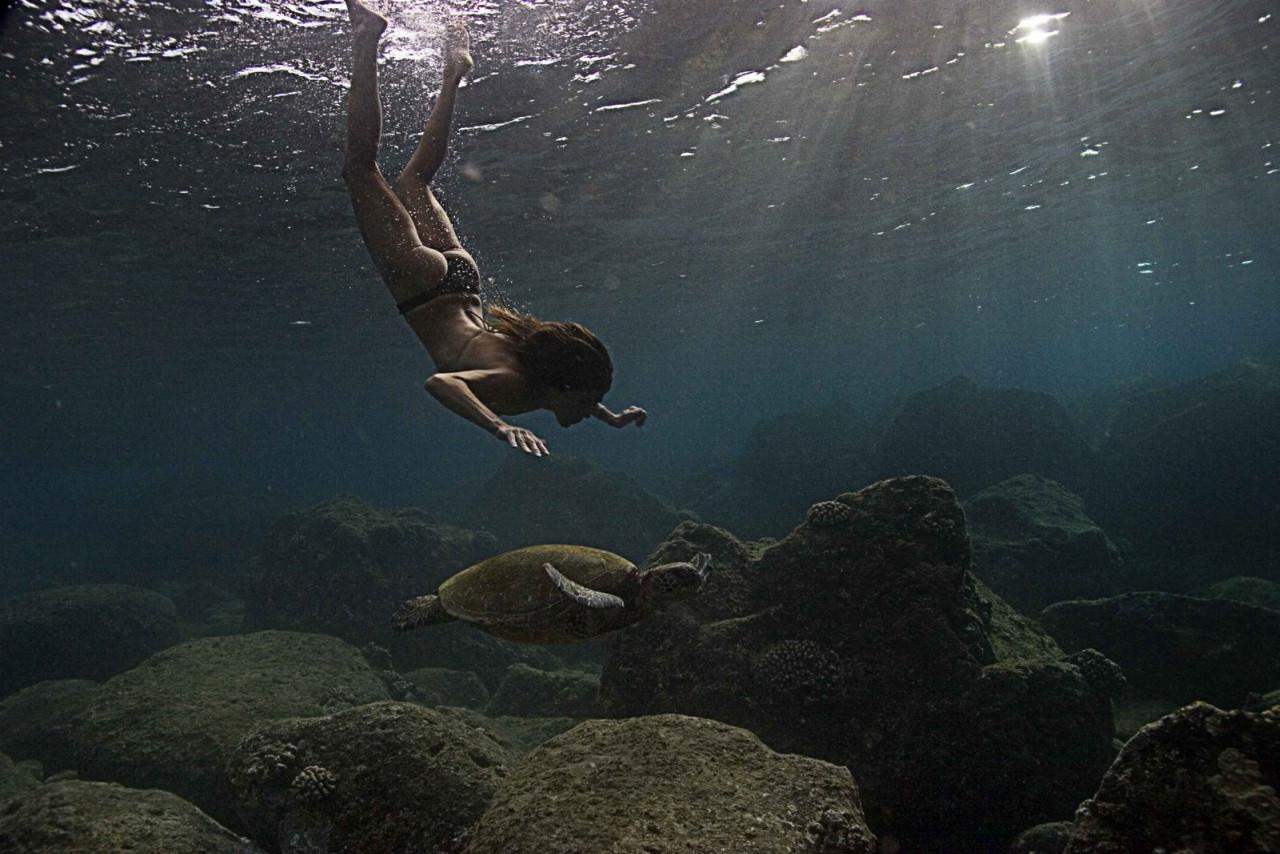Mermaid diving in the sea